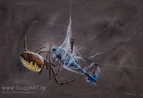 Spinnennetz, Spinne, Beute, Hubschrauber