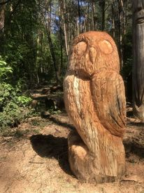 Tiere, Baum, Vogel, Holz