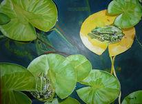 Wasser, Frosch, Wasserpflanzen, Seerosen