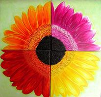 Bunt, Blumen, Farben, Sommer