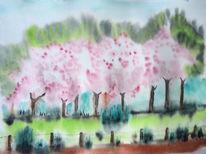 Nuschelberg, Baumblüte, Lauf, Kirschblüte