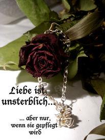 Liebe, Unsterblich, Rose, Fotografie
