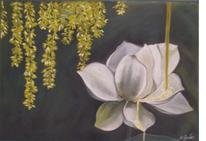Blüte, Pflanzen, Fließen, Regen