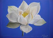 Leben, Weiß, Blüte, Blumen