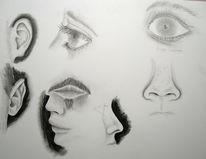Mund, Nase, Augen, Ohr