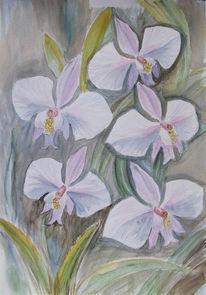 Orchidee, Stillleben, Malerei