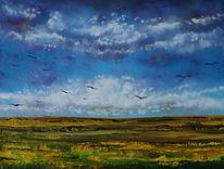 Feld, Wiese, Wolken, Naturlandschaft