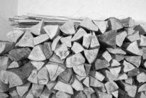 Box, Holz, Schwarz weiß, Baum