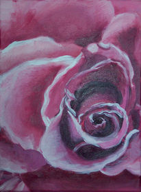 Blumen, Rose, Rosa, Malerei
