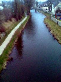 Fluss, Natur, Saale, Pinnwand