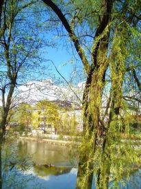 Natur, Fluss, Fotografie