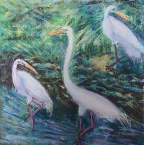 Grün, Wasservogel, Wasser, Fischreiher