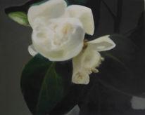 Stillleben, Kamelie, Blumen, Malerei