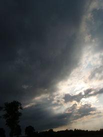 Licht, Wolken, Baum, Fotografie