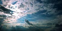 Wind, Wärme, Wolken, Vogel