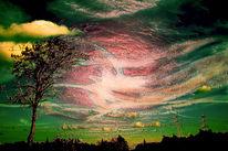 Himmel, Pflanzen, Strommasten, Wolken