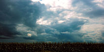 Wolken, Feld, Unbehagen, Wind