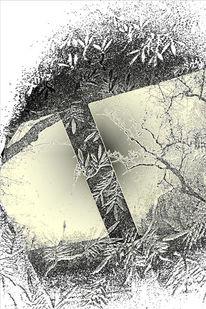 Glas, Scheibe, Spiegelung, Zweig