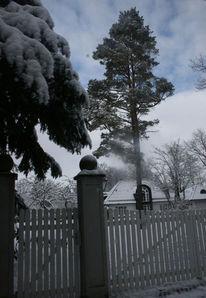 Winter, Wolken, Baum, Tür