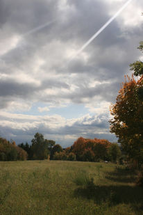 Baum, Wiese, Wolken, Fotografie