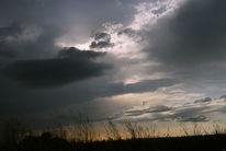 Schatten, Energie, Wolken, Pflanzen