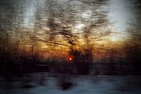 Fenster, Zweig, Sonne, Eis