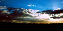 Strauch, Windrad, Himmel, Schatten