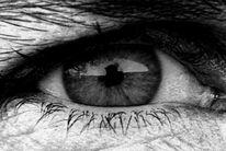 Augen, Pupille, Zilie, Wimpern