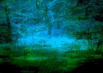 Baum, Amper, Äste, Fluss