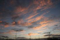 Busch, Wolken, Himmel, Straßenlaterne