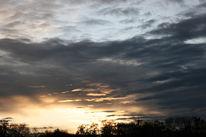 Sonnenuntergang, Wolken, Waldfriedhof, Baum