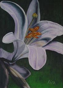 Malerei, Lilie