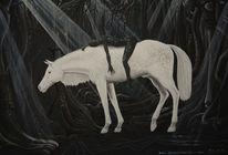 Licht, Surreal, Pferde, Schwarz weiß