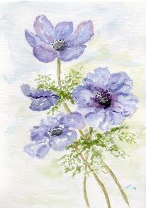 Blüte, Blau, Anemonen, Frühling