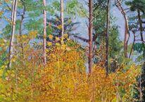 Wald, Landschaft, Herbst, Himmel