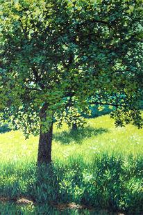 Sommer, Voggenzell, Wiese, Baum