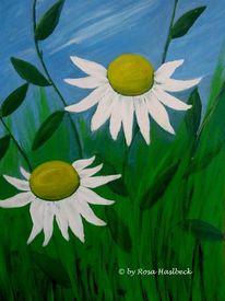 Malen, Sonnenhut, Garten, Blumen weiß