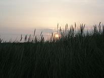 See, Sonnenaufgang, Fotografie, Dünen