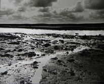 Wolken, Weite, Moor, Wasser