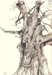 Baum, Tusche, Federzeichnung, Holzstruktur