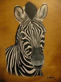 Zebra, Afrika, Malerei, Tiere