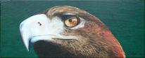 Blick, Vogel, Adler, Acrylmalerei