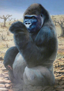 Tiere, Tierportrait, Affe, Virunga
