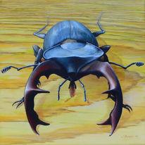Käfer, Hirschkäfer, Tiere, Tierportrait