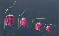 Schachblume, Schachbrettblume, Blüte, Pflanzen