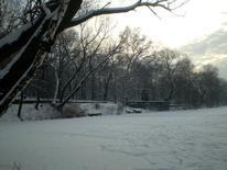 Schnee, Winter, Fotografie