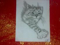 Katzenkinder, Katze, Katzenbaby, Zeichnungen