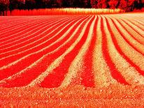 Anfrage, Rot, Bahn, Erde