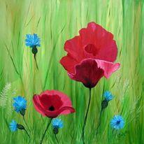 Pflanzen mohn kornblumen, Gras, Malerei