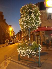 Frankreich, Bretagne, Susannaegottschalk, Fotografie